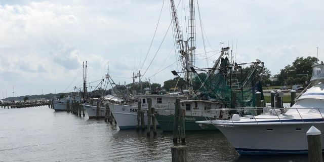 Commercial fishing boats sit in the Pass Christian Harbor