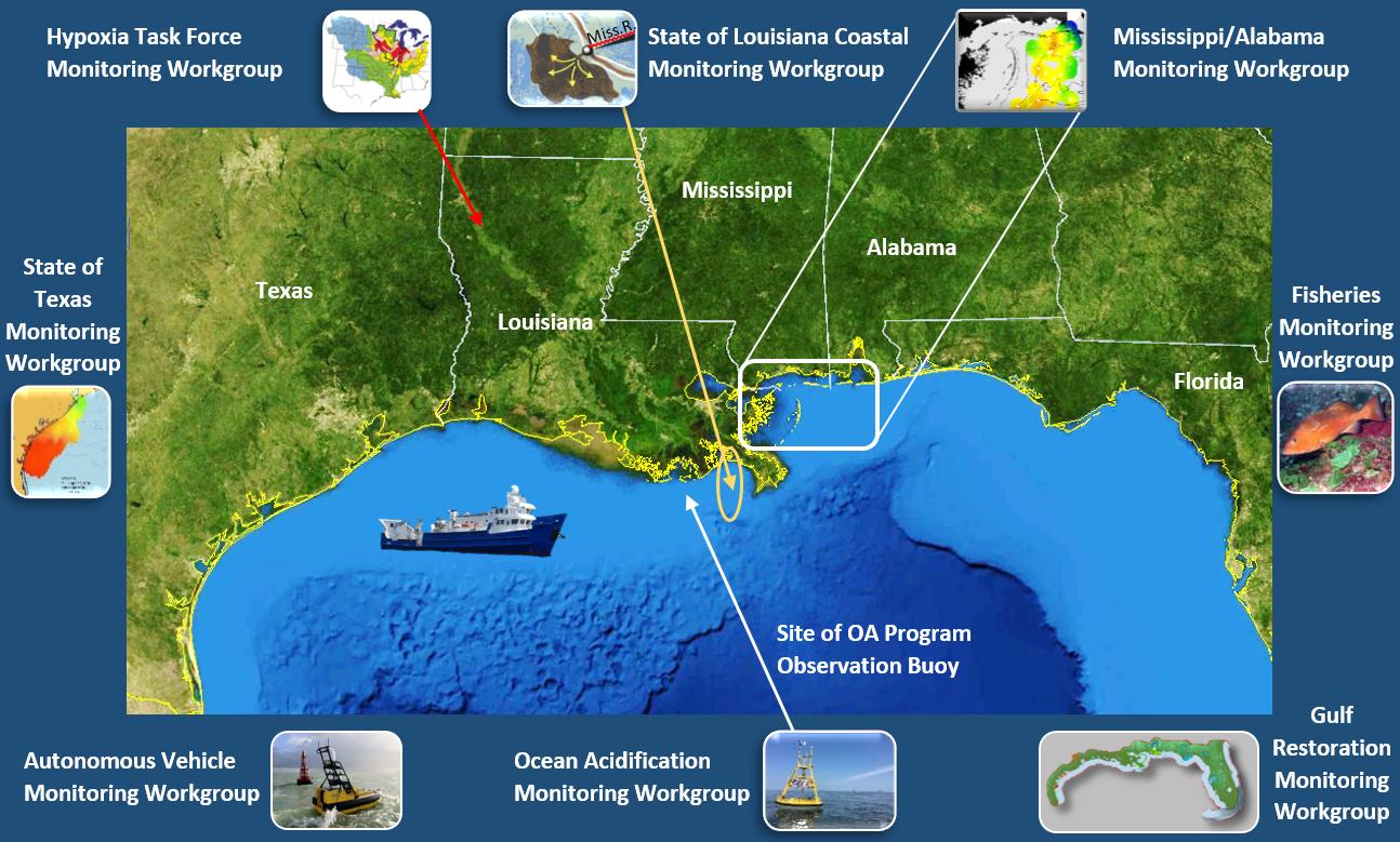 CHAMP Workgroups around the Gulf